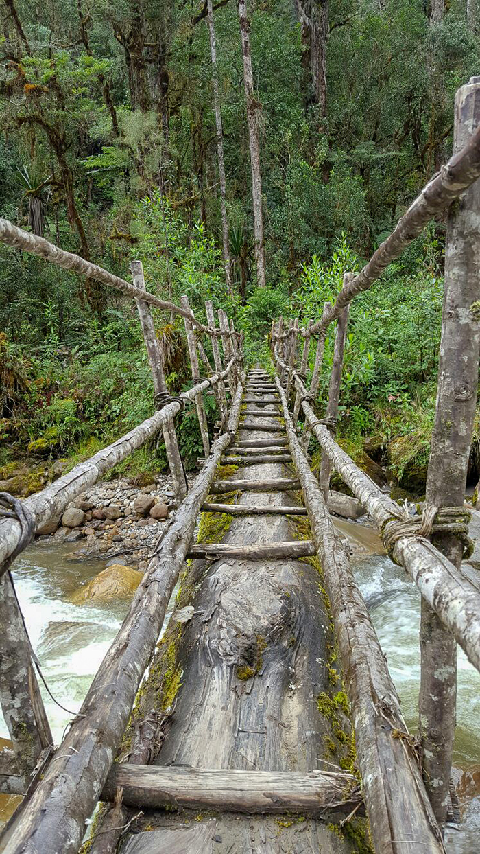 The tree bridge to get highest mountain to get the wilderness of the journey to Angguruk village and Kosarek village
